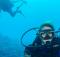 Scuba Diving Info